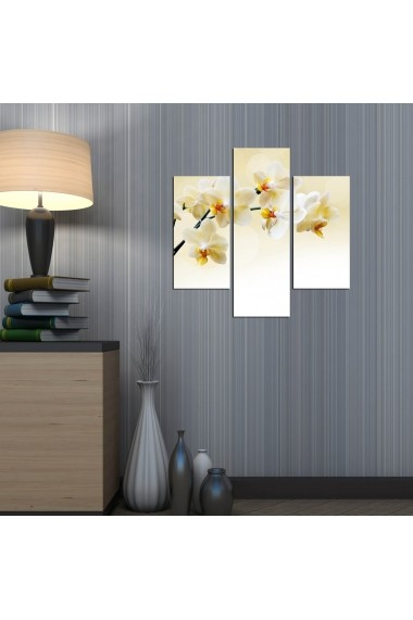 Tablou decorativ (3 bucati) Three Art 251TRE1949 multicolor