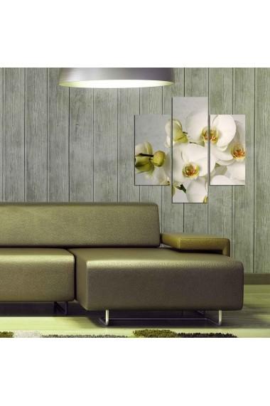 Tablou decorativ (3 bucati) Three Art 251TRE1962 multicolor