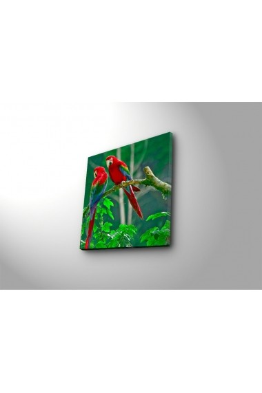 Tablou decorativ Sightly 252SGH1205 multicolor