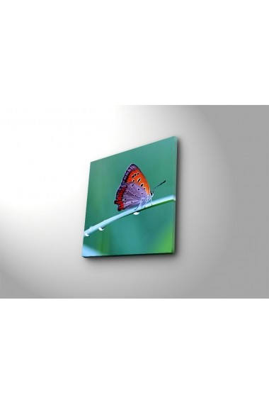 Tablou decorativ Sightly 252SGH1209 multicolor