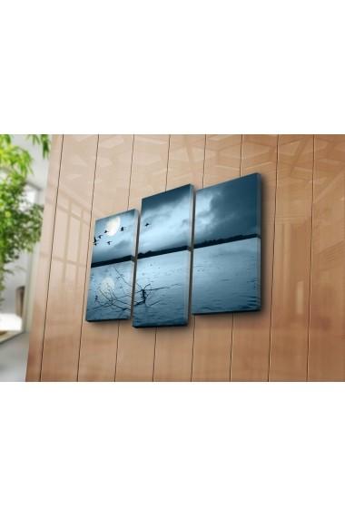 Tablou decorativ (3 bucati) Sightly 252SGH1260 multicolor