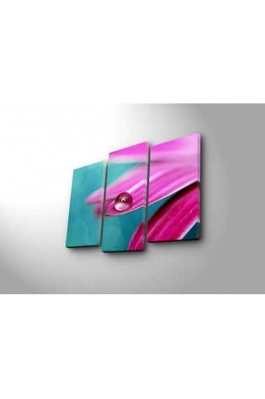 Tablou decorativ (3 bucati) Sightly 252SGH1272 multicolor