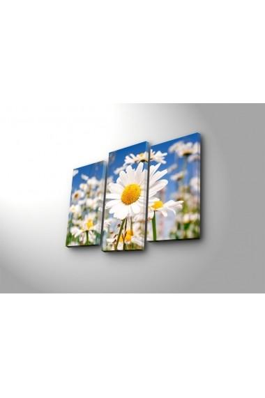 Tablou decorativ (3 bucati) Sightly 252SGH1273 multicolor