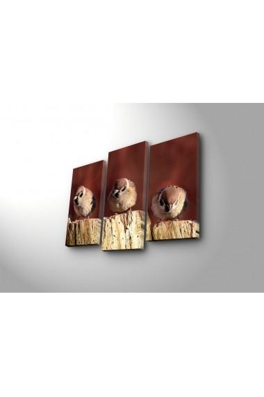 Tablou decorativ (3 bucati) Sightly 252SGH1253 multicolor