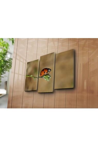 Tablou decorativ (3 bucati) Sightly 252SGH1281 multicolor
