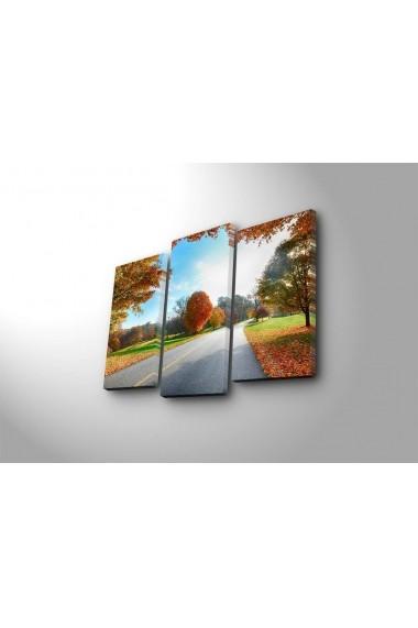 Tablou decorativ (3 bucati) Sightly 252SGH1282 multicolor