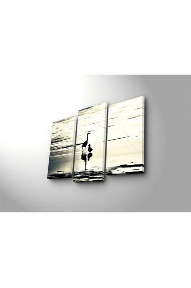 Tablou decorativ (3 bucati) Sightly 252SGH1285 multicolor