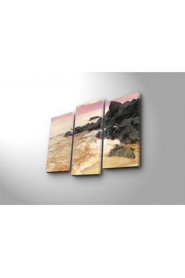 Tablou decorativ (3 bucati) Sightly 252SGH1289 multicolor