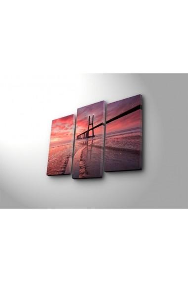 Tablou decorativ (3 bucati) Sightly 252SGH1297 multicolor