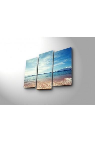 Tablou decorativ (3 bucati) Sightly 252SGH1256 multicolor