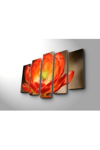 Tablou decorativ (5 bucati) Sightly 252SGH1313 multicolor