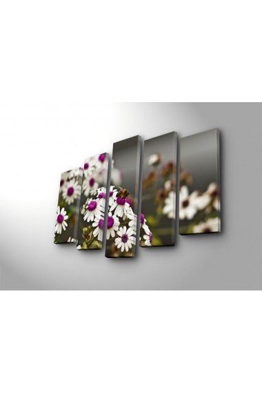 Tablou decorativ (5 bucati) Sightly 252SGH1303 multicolor