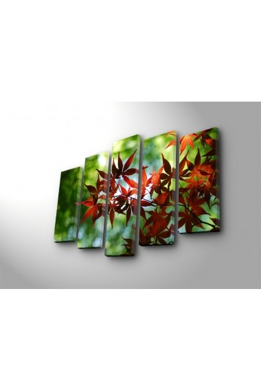Tablou decorativ (5 bucati) Sightly 252SGH1336 multicolor