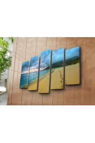 Tablou decorativ (5 bucati) Sightly 252SGH1305 multicolor