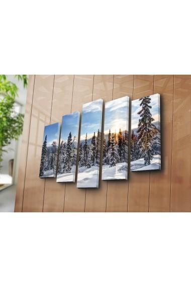 Tablou decorativ (5 bucati) Sightly 252SGH1343 multicolor