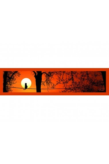 Esarfa Accesorii by ID 180x45 THE CAT AND THE MOON