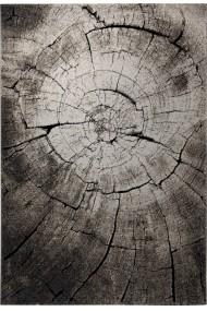 Covor Wecon home Modern & Geometric Wild Oak, Maro, 160x225